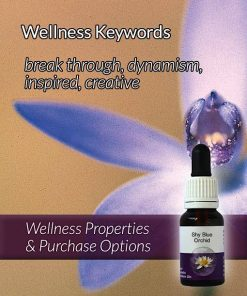 Shy-Blue-Orchid-Flower-Essences