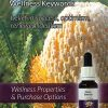 Wooly-Banksia-Flower-Essences