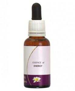 Essence-of-Energy